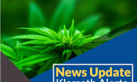Traffic Stop On Highway 140 East Leads To Search Warrant And Marijuana Arrest