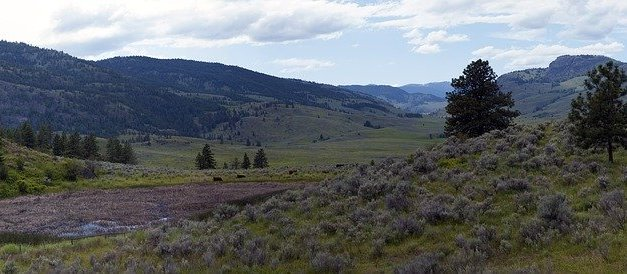BLM TEMPORARILY CLOSES DEVELOPED RECREATION FACILITIES IN OREGON