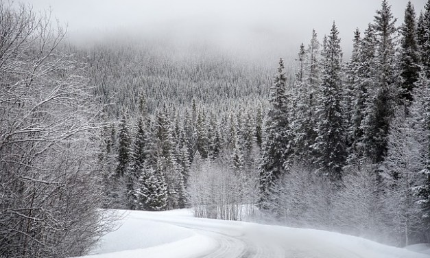 Weather Outlook: Colder weather with chance of rain and snow this weekend