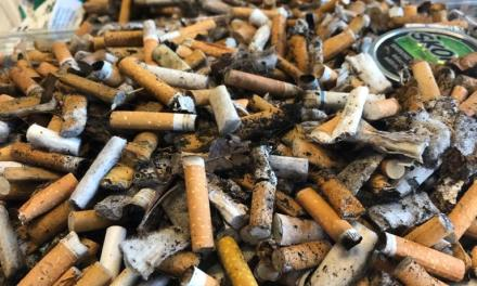 Blue Zones Project postpones cigarette butt pickup, seeks to promote awareness of tobacco litter
