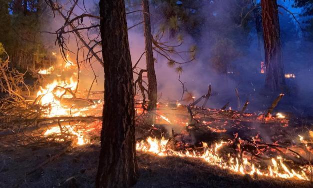 Chiloquin Ridge Fire burning near Chiloquin Ridge Road – Update