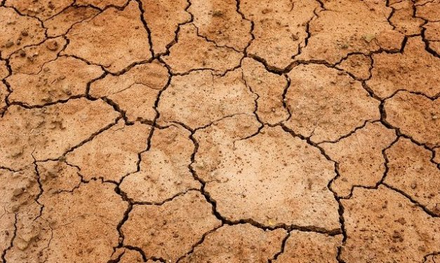 Governor Kate Brown Declares Drought Emergency for Klamath County