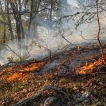Outdoor Burning Should Not Occur In Next 3 Days According To Officials