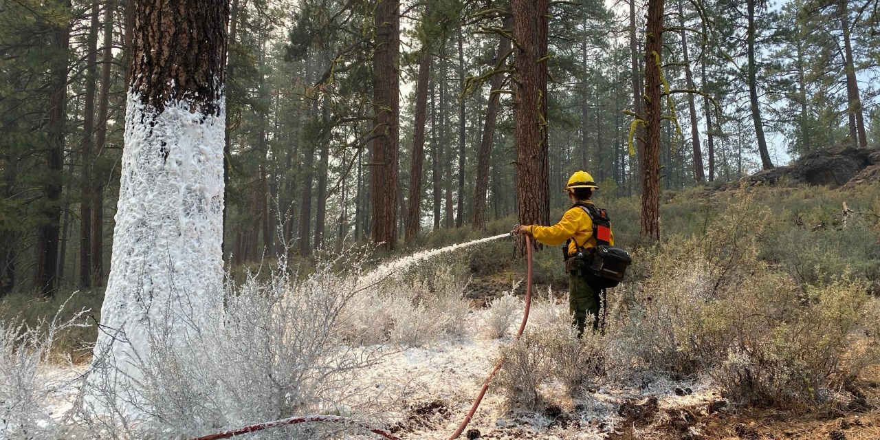 How To Support Firefighters on the Bootleg Fire