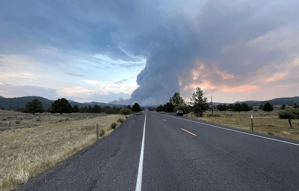 Patton Meadow and Willow Valley Fire morning update