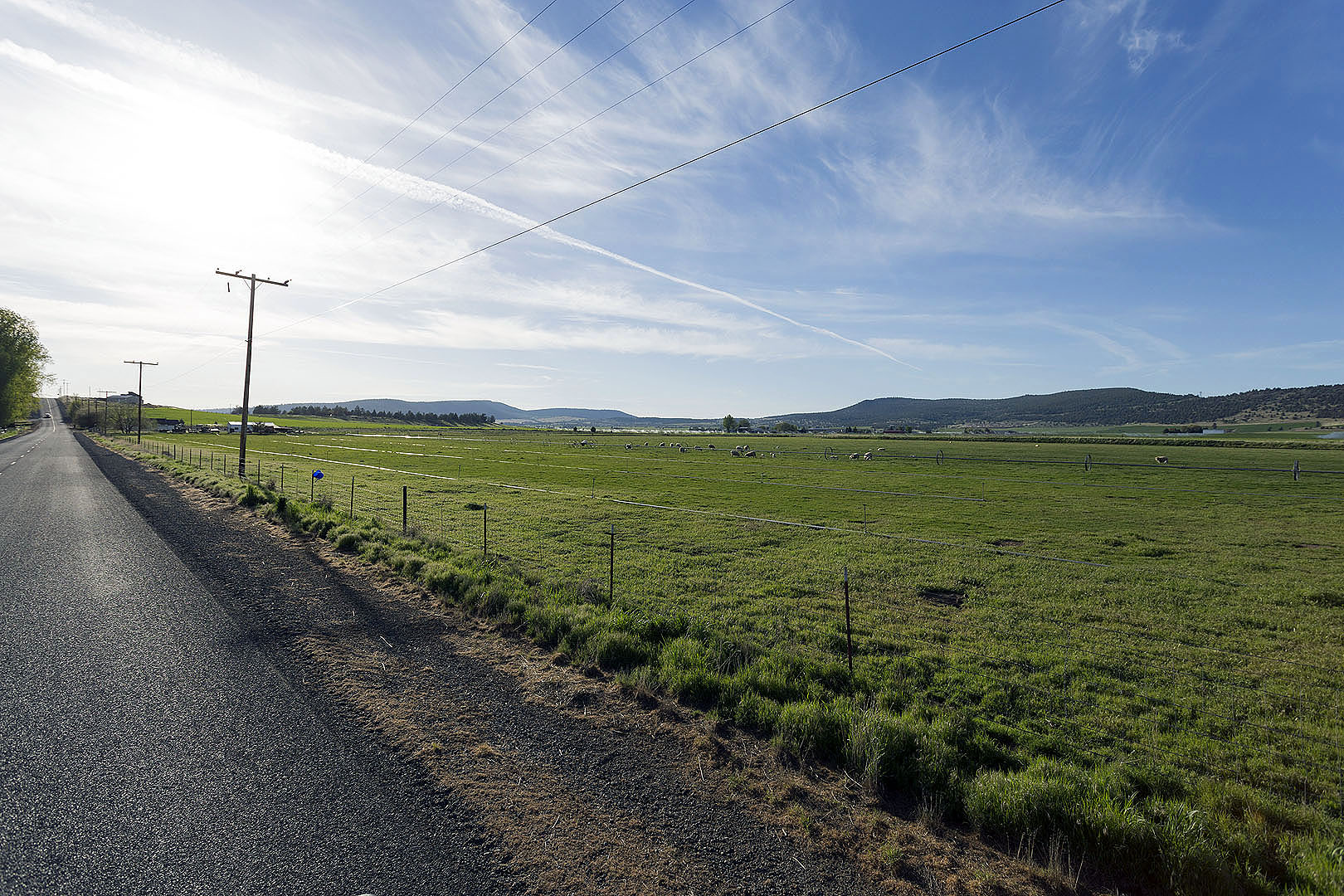Organic Farms in Klamath Falls