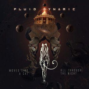 Fluid Dynamic Moves Like a Cat All Through the Night Album Art Design