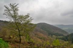 Der letzte Panoramablick, bevor es wieder abwärts zu Strasse, Dorf und meinem Wagen ging.