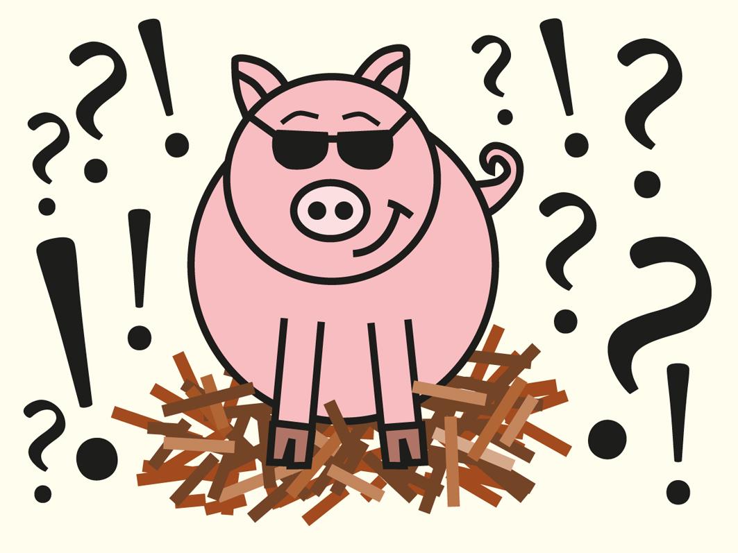 Tier-Quiz für Groß und Klein: Bauen Schweine Nester?