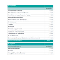 Beispielbild des Budgetrechners, welche fiktive Einnahmen und Ausgaben auflistet