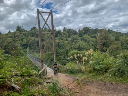 Suspension bridge spanning a river valley, forest vegetation in the background and cyclist crossing the bridge