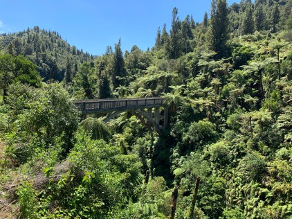 Concrete bridge spanning a narrow gorge amidst a hilly jungle-like scenery with dense vegetation