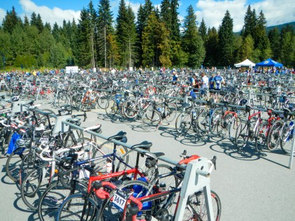Bicycles parked on dedicated stands