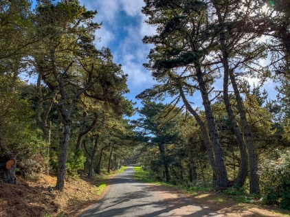 Quiet, single lane road, ascending up the ridge