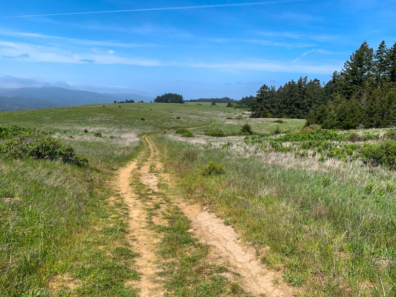 The first part of Bolinas Ridge Trail - windy, bumpy and fully exposed