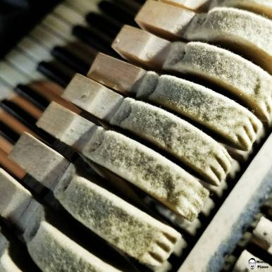 This is what it looks like, when you dont call the piano Tuner????