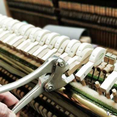 My Hammer Monster! Saves a lot of time :) . . . . . #instapiano #pianolover #pianopiano #pianokeys #pianos #pianogram #pianoman #pianomusic #pianoplayer #pianolove #music #pianist #piano#pianoforte #piano #music #klavierspielen #klavierunterricht #klavierstück #pianocover #musik #pianomusic #klavierkonzert #klavierkunst #musician #klaviernoten #klavierüben #klaviermusikzumträumen #klavierabend #pianolessons #pianolove #klavieres #pianolesson #pianolover #klaviercover