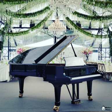 Today i tuned this wonderful Steinway and Sons model C for Max Kraft. #steinway #piano #steinwayandsons #instapiano #pianolover #pianopiano #pianokeys #pianos #pianogram #pianoman #pianomusic #pianoplayer #pianolove #music #pianist #piano#pianoforte #piano #music #klavierspielen #klavierunterricht #klavierstück #pianocover #musik #pianomusic #klavierkonzert #klavierkunst #musician #klaviernoten #klavierüben #klaviermusikzumträumen #klavierabend #pianolessons #pianolove