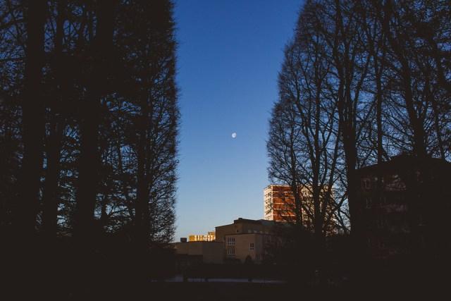 Jakten på den lilla månen