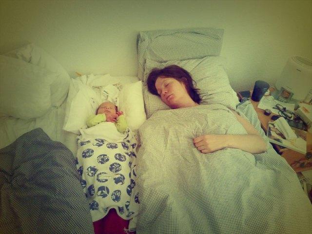 Sova gott