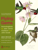 "Flying Gems: Hummingbirds by John James Audubon and John Gould poster 24""x 32"""