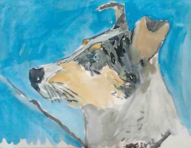 Daily Dog Drawing #004: Kurzhaarcollie
