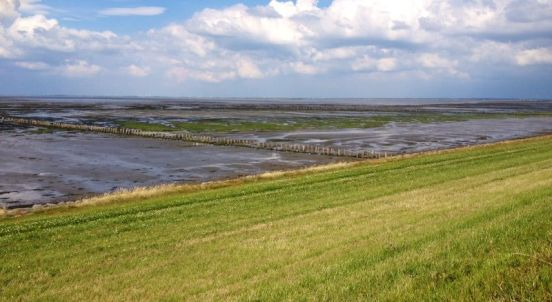 waddengebied denemarken