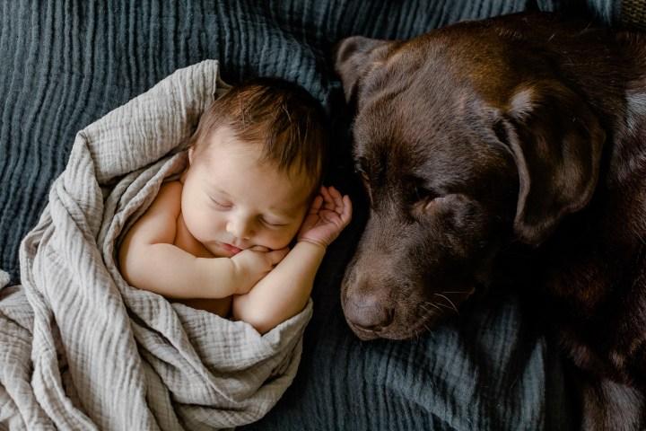 Home // Gemütliches Neugeborenenshooting zu Hause