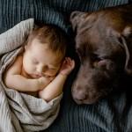 Hund mit Baby Fotografin