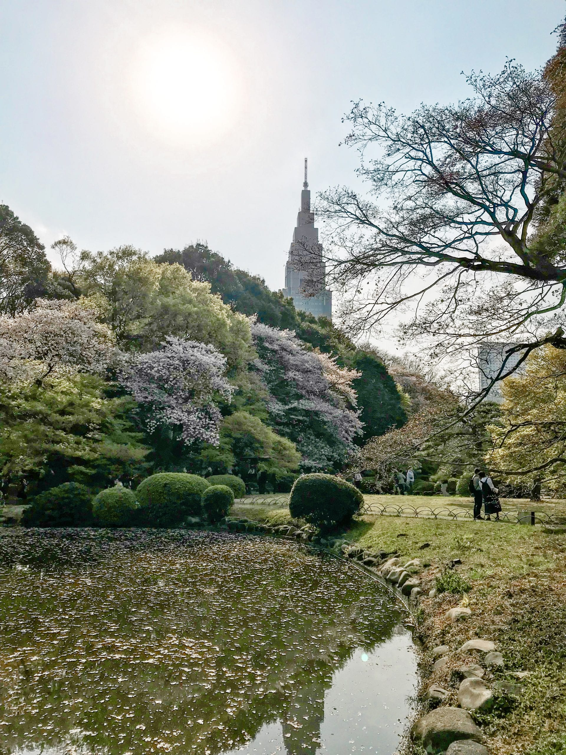 Tokio Japan Shinjuku Gyoen National Garden Hanami spots