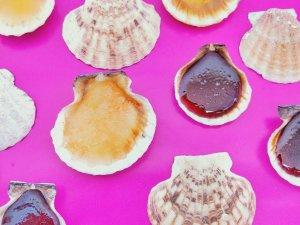 Read more about the article Schleckmuscheln selber machen – Einfaches Rezept für DIY Süßigkeiten