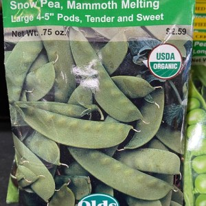 Old's Organic Snow Pea, Mammoth Melting
