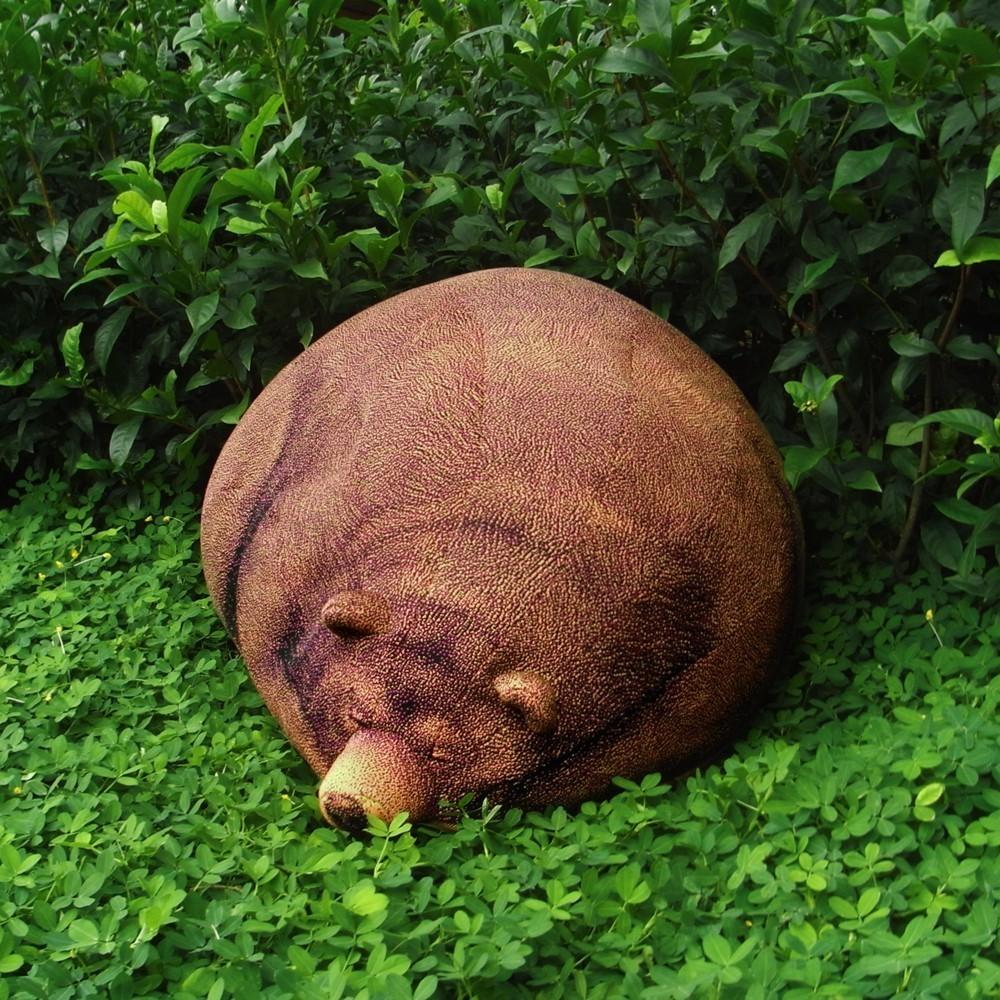(Deutsch) Schlafender Grizzly : gemütlich und absolut friedlich