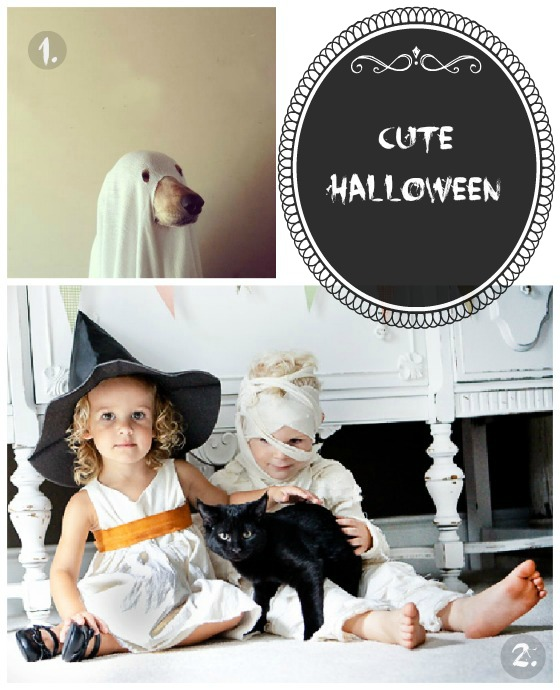 cute halloween costumes dog ghost, with and mummy