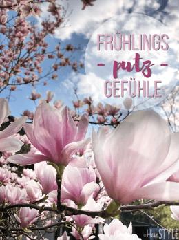 fruehjahrsgefuehl-muehols-aufgeraeumt-rezension-Magnolien Cover-by-kleinSTYLE.com