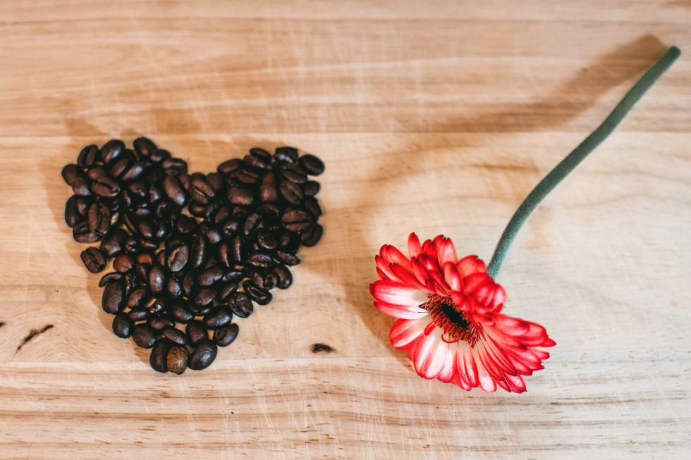 love beans flower.jpeg