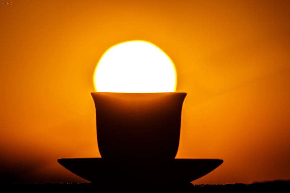 Sunny cup