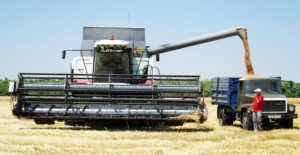 ювелиры земледелия