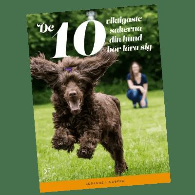 10viktigaste_400x400