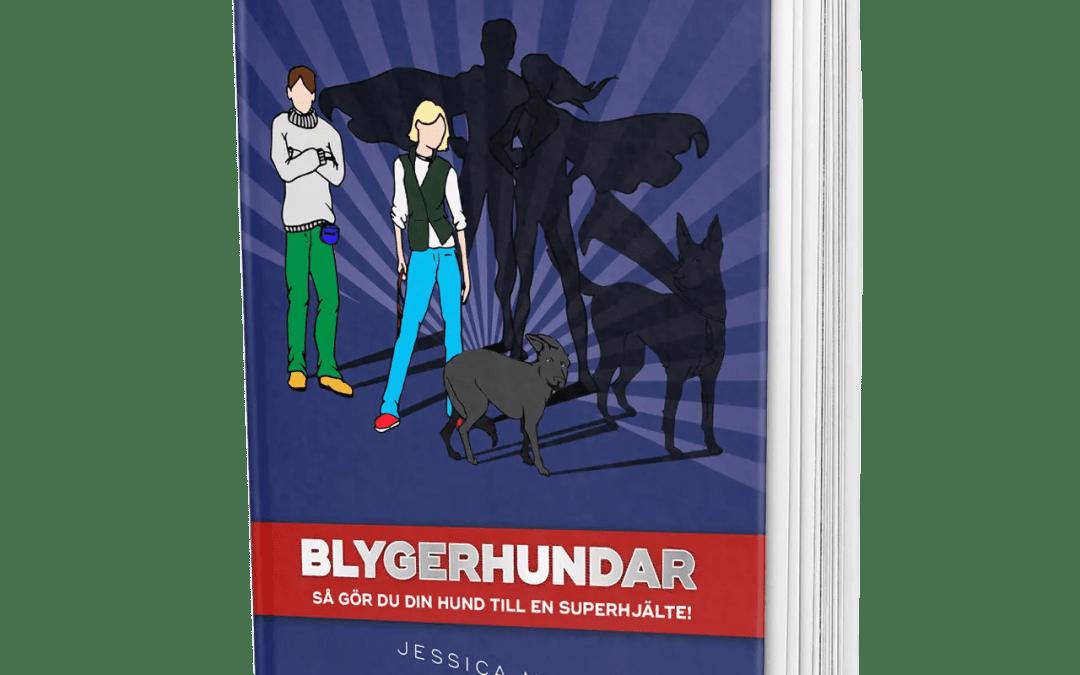 Blygerhundar – så gör du din hund till en superhjälte