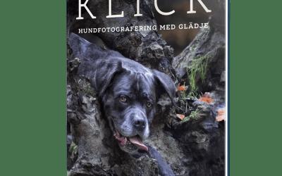 KLICK – hundfotografering med glädje