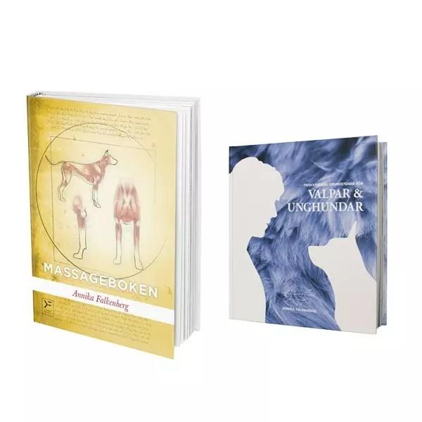 Paket: Massageboken & Friskvårdens grundstenar
