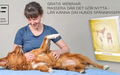 Gratis webinar: Massera där det gör nytta – lär känna din hunds spänningsprofil – Annika Falkenberg