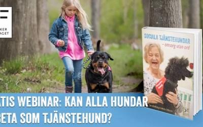 Gratis webinar: Kan alla hundar arbeta som tjänstehund? – Helena Eriksson & Sara Karlberg