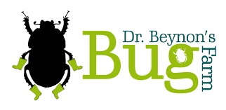 Dr Beynons Bug Farm: Championing entomology in West Wales #HalfTermFun