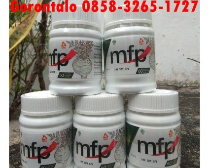 Jual Maca Fertilizer Power Gorontalo 0858-3265-1727