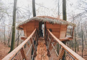 TREE HOUSE – o tom, že domček na strome nie je len ilúzia z fotiek na sociálnych sieťach