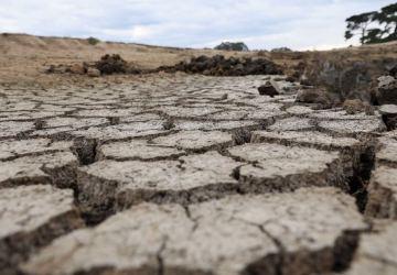 V Austrálii oficiálne vyhlásili stav sucha. Platí to pre sto percent územia štátu NJW