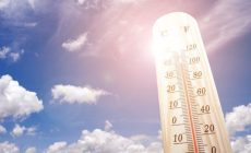 SHMÚ píše o najteplejšom roku v histórii na niektorých staniciach. Je medzi nimi aj vaše mesto?
