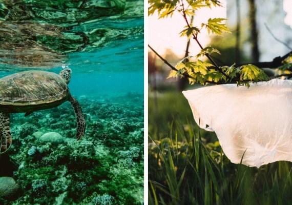 Vedci varujú, že v roku 2050 bude v oceánoch viac plastov ako rýb. Pomôže táto šokujúca kampaň?